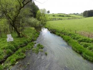 Riviertjes zoals de Warche doorploegen het heuvelende landschap