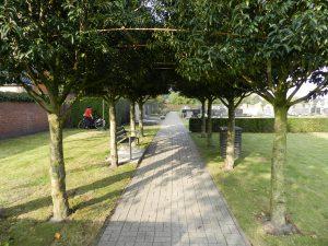 kerkhof-groenscherm-dscn6002-2